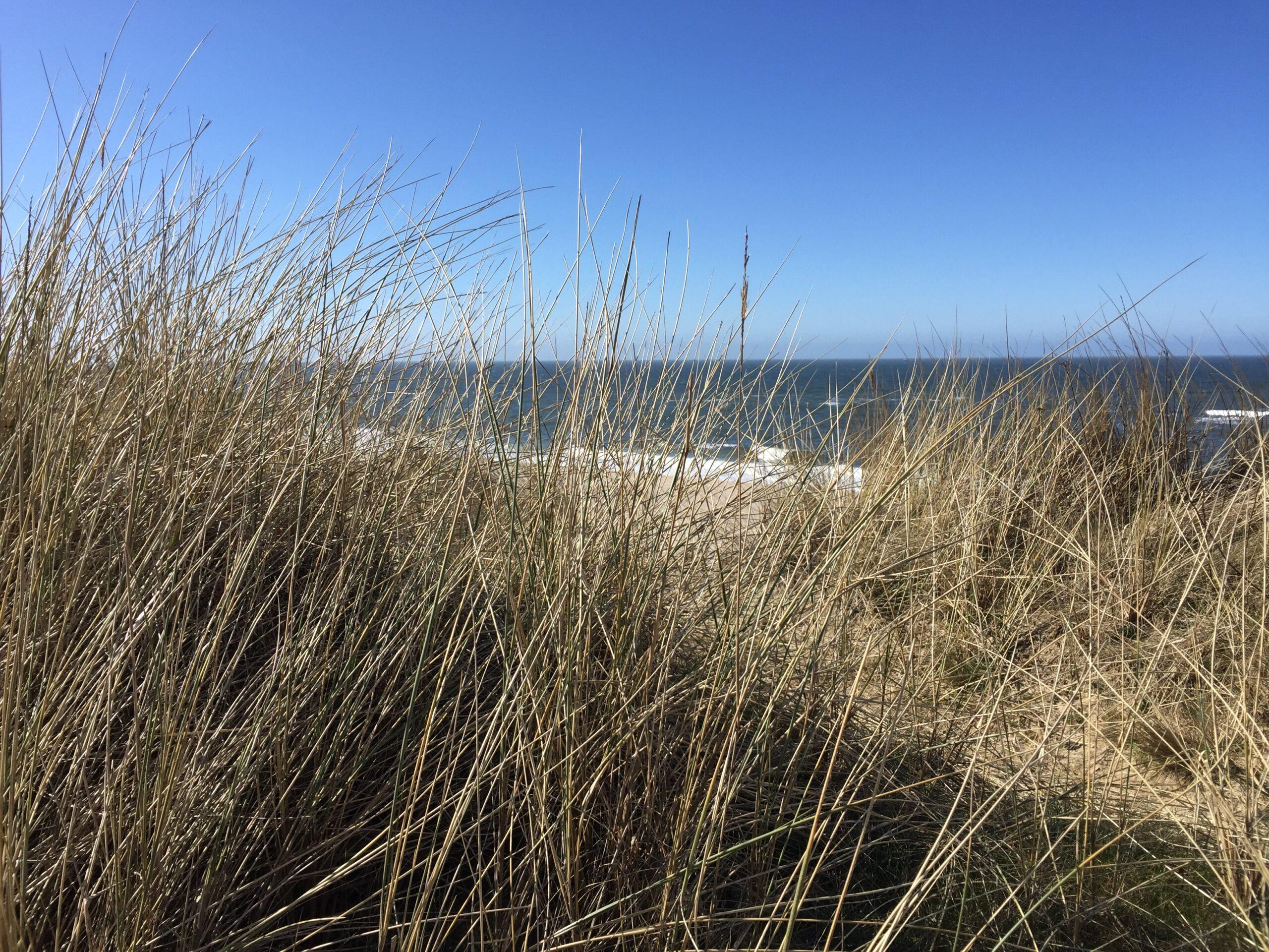Zurück zu meiner inneren Mitte — Onlinetraining zur Stressbewältigung